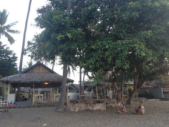 Lilin Lovina Beach Hotel : hotel