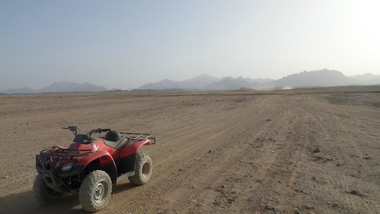 Eastern (Arabian) Desert: quad safari trip