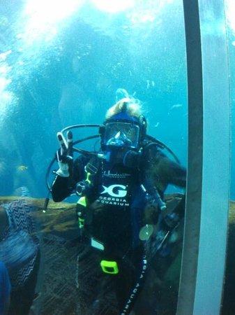 Georgia Aquarium : Staff in Large Marine Life Aquarium