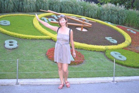 Lac Léman (Lac de Genève) : Цветочные часы