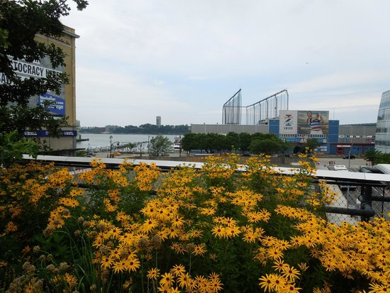 High Line: river view