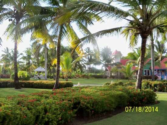 Tropical Princess Beach Resort & Spa : jardines