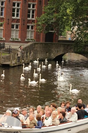 Private Tours Paris: Bruges