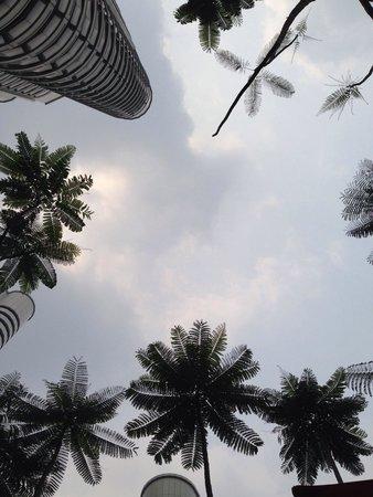 Shangri-La Hotel Kuala Lumpur: プールから空