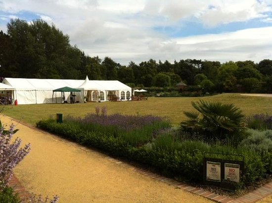 Upton Country Park: Walled garden with wedding marquee