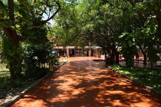 Melia Puerto Vallarta All Inclusive: vista de los pasillos