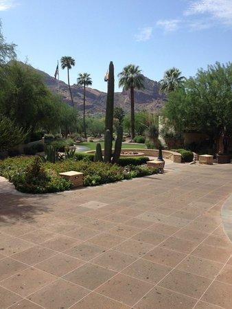 JW Marriott Scottsdale Camelback Inn Resort & Spa: View of grounds