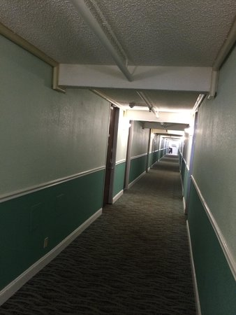 Howard Johnson Resort Hotel - ST. Pete Beach FL: Dark, murky, industrial look hallway.