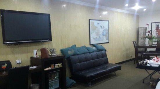 Bakhos Suites Hotel : televisor