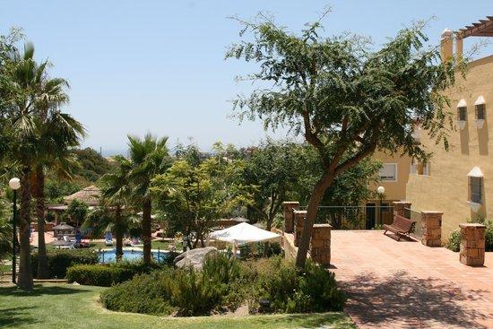 Colina del Paraiso by CheckIN: Pool area / grass area