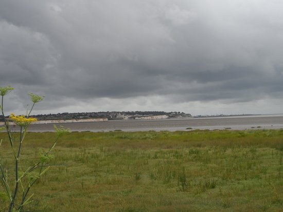 Sandwich and Pegwell Bay National Nature Reserve: Fantastic trip