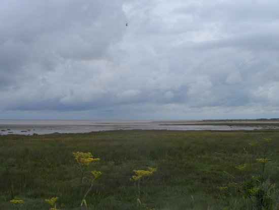 Sandwich and Pegwell Bay National Nature Reserve