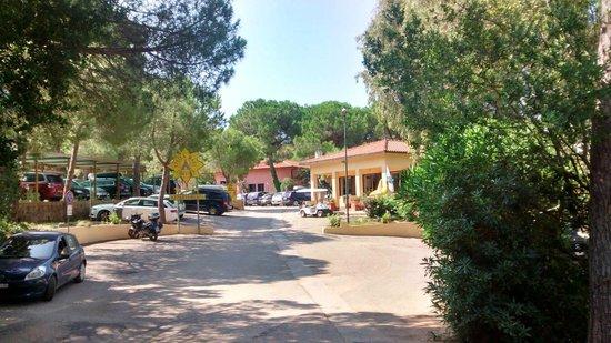 Stella Mare Camping Village: entrata campeggio