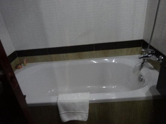 Royal Empire Hotel : baño