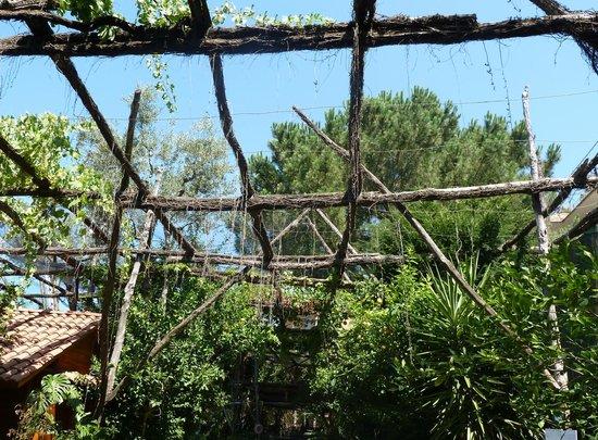 Villaggio Verde: From our bedroom window