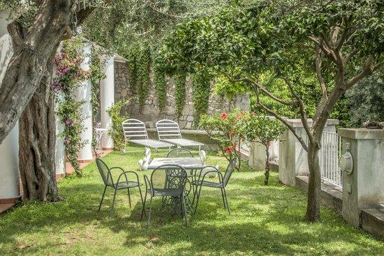 La Maliosa d'Arienzo: The garden