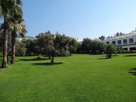 Hotel Samara: Grand jardin
