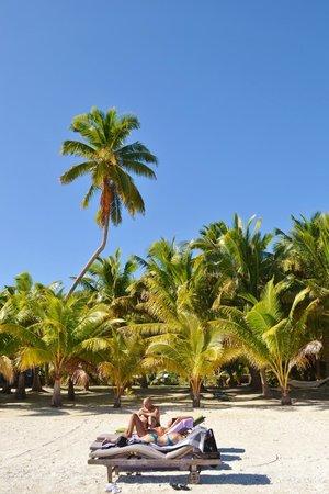Are-a-Matatui : spiaggia