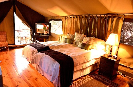 Chandelier Game Lodge & Ostrich Show Farm : La chambre sous la tente