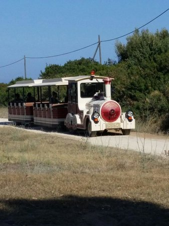 VOI Arenella resort: Trenino navetta