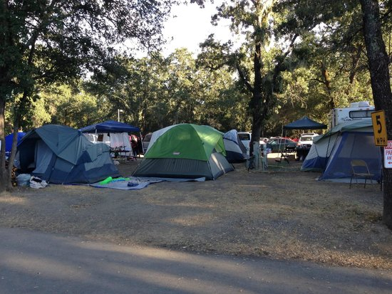 Alexander Valley RV Park & Campground: No place for kids or pets to play.