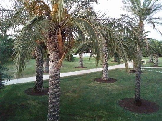 VOI Arenella resort: Vista dalla stanza