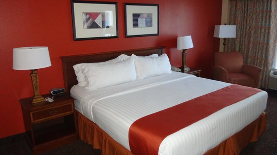 Holiday Inn Chicago O'Hare: Chambre lit King