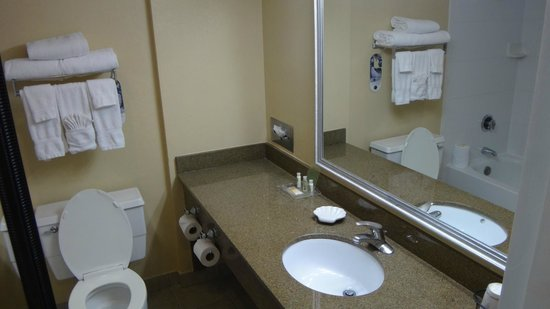 Holiday Inn Chicago O'Hare: Salle de bain