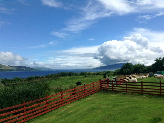 View from the Arle Lodge Garden - July 2014