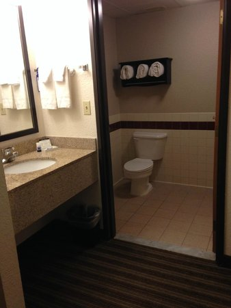 Best Western Plus Newark/Christiana Inn: Nice, roomy bathroom