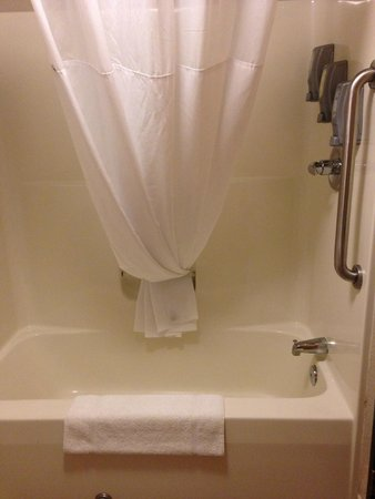 Best Western Plus Newark/Christiana Inn: Big shower