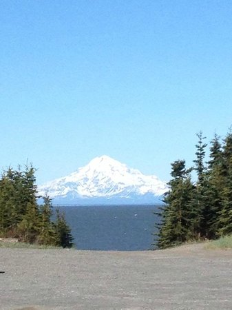 Jimmie Jack's Alaska Lodge: Accross Cook Inlet from the lodge.
