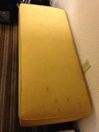 Best Western Plus Newark/Christiana Inn: Ick, please clean this! Or better yet, throw it away!