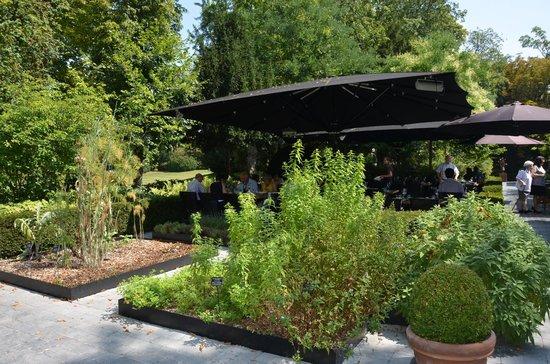 En plat dorade po l e aux girolles et l gumes vapeur - Restaurant le jardin reims crayeres ...