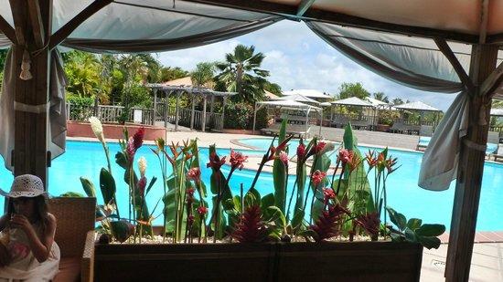 HOTEL CAP MACABOU : piscine vu du restaurant