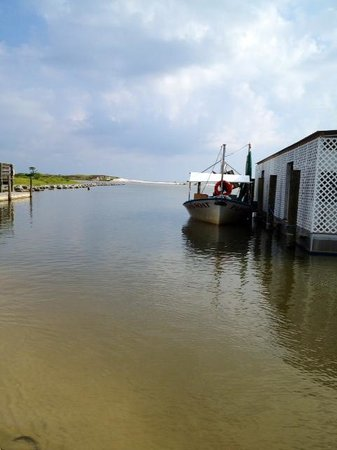 Dauphin Island Harbor House : Live Bait being delivered by Ferry