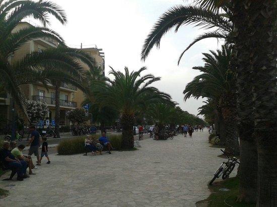 Hotel Soraya: Il bellissimo lungomare!