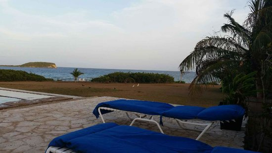Blue Horizon Boutique Resort: View from infinity pool