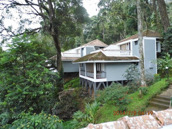 The Tall Trees Munnar: cottage