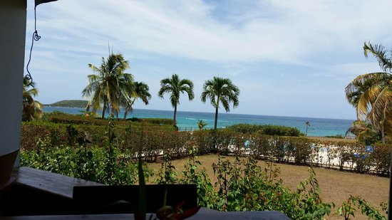 Blue Horizon Boutique Resort: View from Carambola Rest.