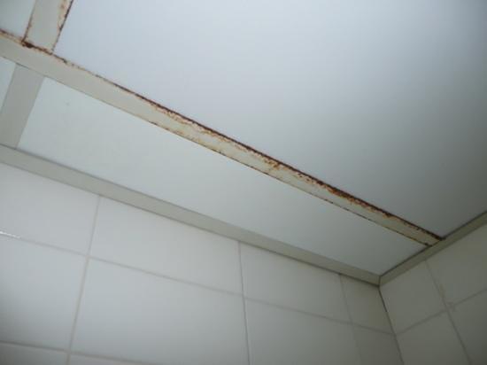 MedPlaya Hotel Monterrey : le plafond de la salle de bain