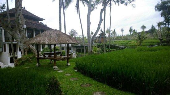 Kamandalu Ubud : Территория отеля