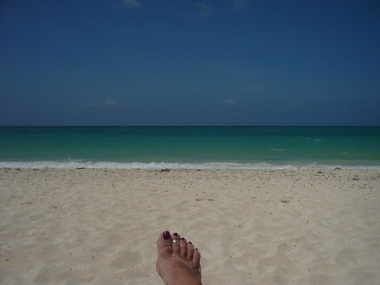 Melia Cayo Coco: view from the beach