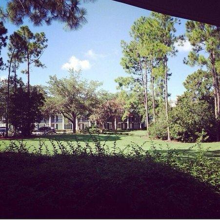 Disney's Port Orleans Resort - Riverside: Vista do nosso quarto