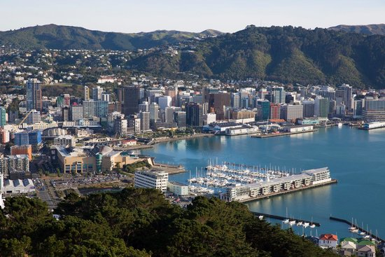 Mount Victoria : Wellington