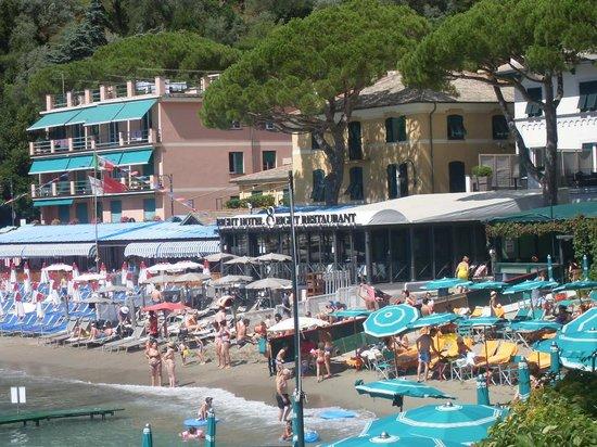 che spiaggia... - Foto di Bagni Fiore, Santa Margherita Ligure ...