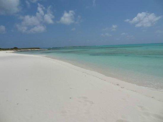 Club Med Columbus Isle : Plage privée...