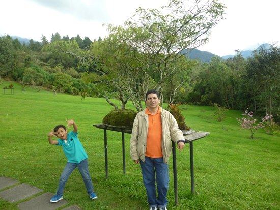 Estelar Recinto del Pensamiento Hotel: Jardín Bonsai