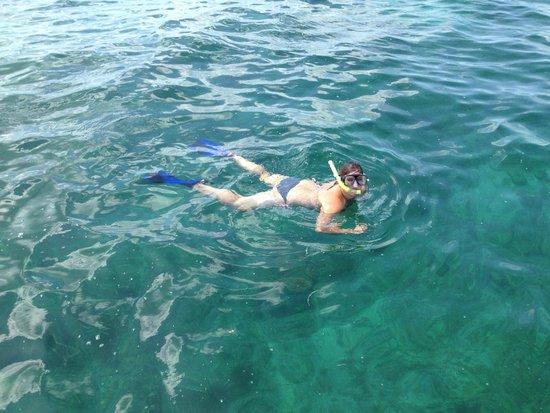 Catamaran Echo: Snorkeling