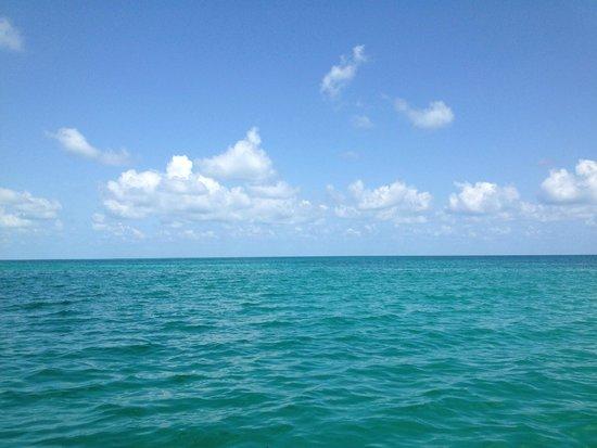 Catamaran Echo: Beautiful views